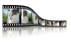 simple video marketing tips